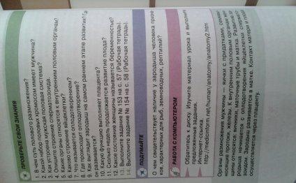 Босова инфор
