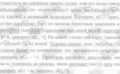 Русский язык 8 кл. 2009 г