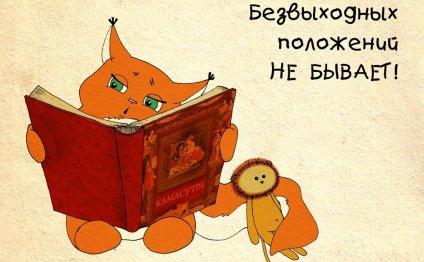 ши -тцу фото: